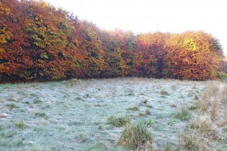 Jipsingbourtange - wintermorgen (foto - Luken Hulsker)