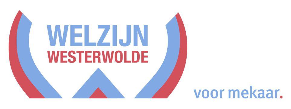 Deze afbeelding heeft een leeg alt-attribuut; de bestandsnaam is Welzijn-westerwolde.jpg